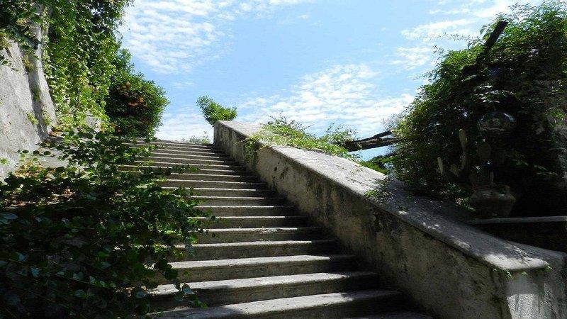 Escaleras a la terraza invernadero