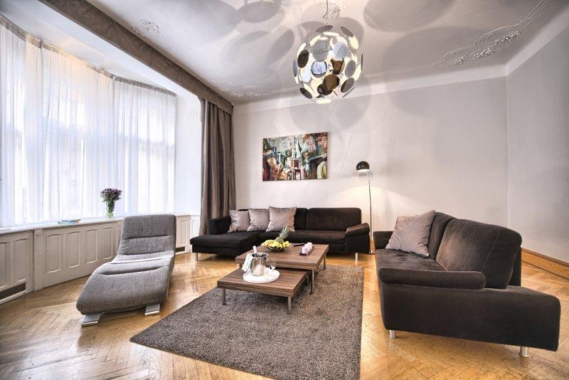 salon spacieux avec des canapés confortables