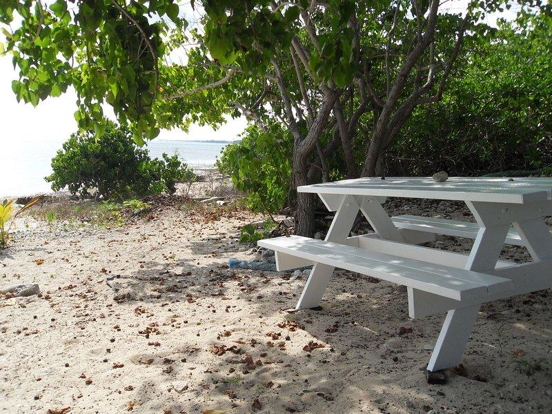 mesa de picnic a la sombra en la playa
