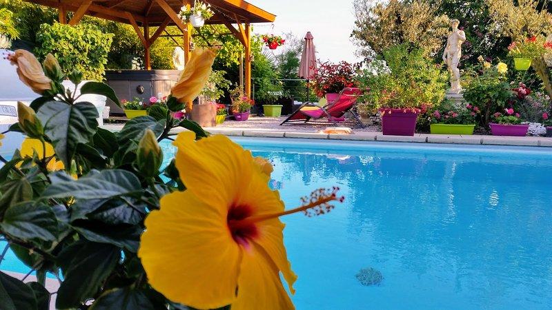 GITE HERMINE OCCITANE, location de vacances à Rieux-Volvestre