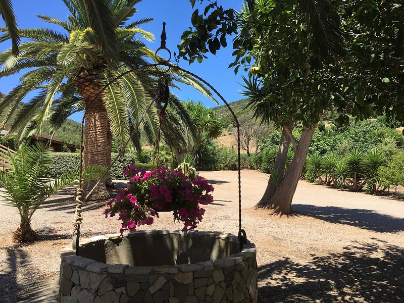 Cottage with garden and terrace, holiday rental in Tramariglio