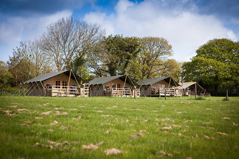 Buttercup - Luxurious Glamping with Hot Tub, location de vacances à Three Burrows