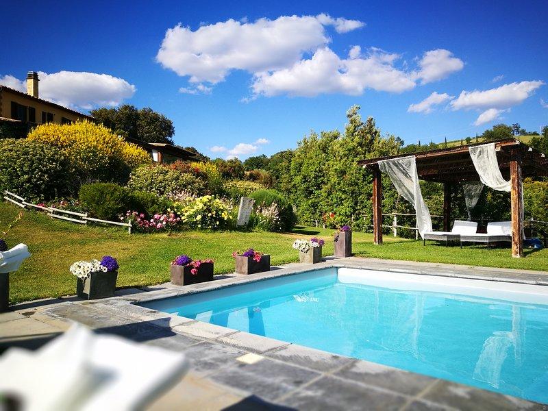 Il Troscione, holiday rental in Montorgiali