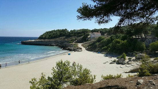 Rez de maison sous les pins de provence, holiday rental in Berre l'Etang