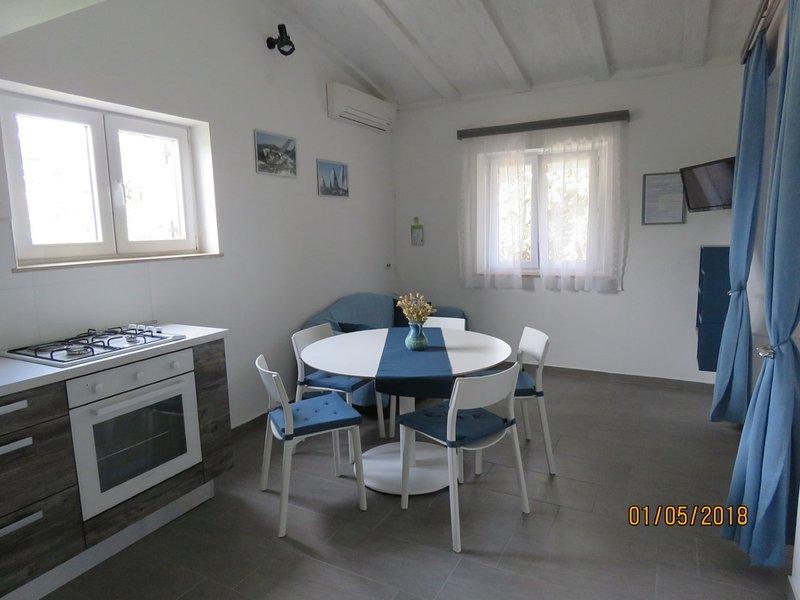 Beatiful Apt BLUE -only 100 meters from sandy  beach, vacation rental in Nin