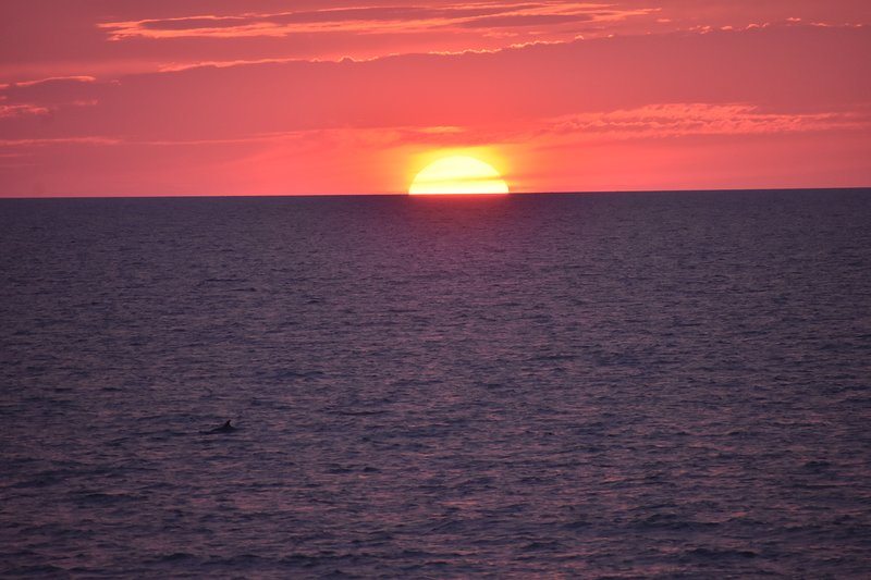 Amazing Sunsets right outside your private balcony!