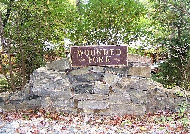 Fork herido en Boone, Carolina del Norte