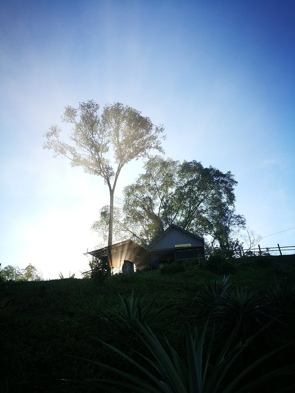 +JuJu Cabin is ideal for guests who enjoy being in nature and independent accommodation with privacy