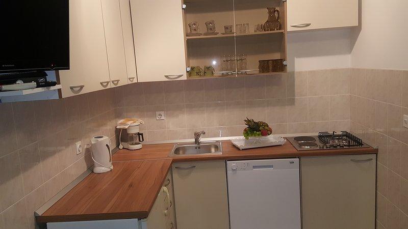 apartman cvitanovi 2, vacation rental in Krilo Jesenice