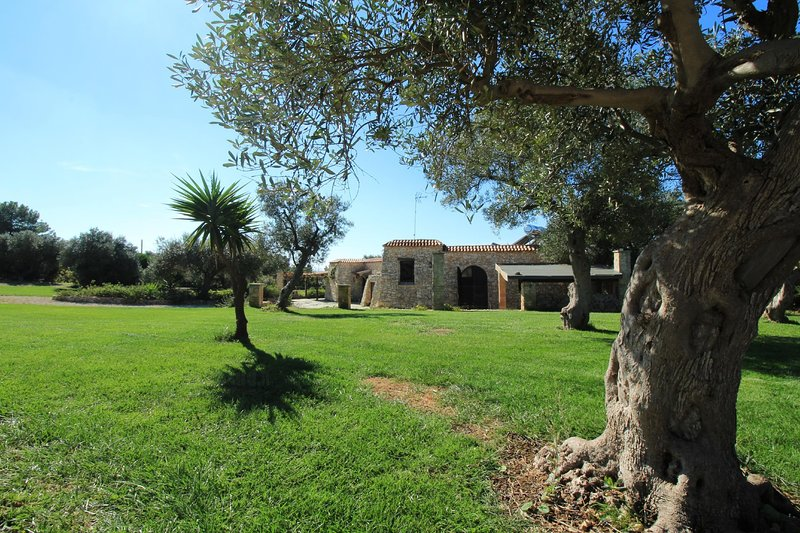 Piperita lovely trullo, holiday rental in Pescoluse
