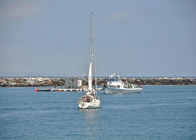 Balboa Harbor