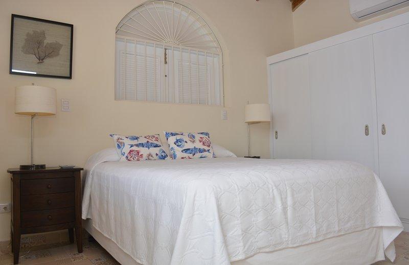 Queen Bed Master Bedroom with TV