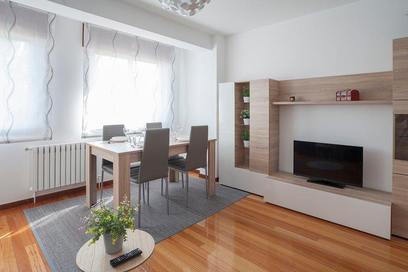Apartamento O Muiño, vacation rental in Becerrea