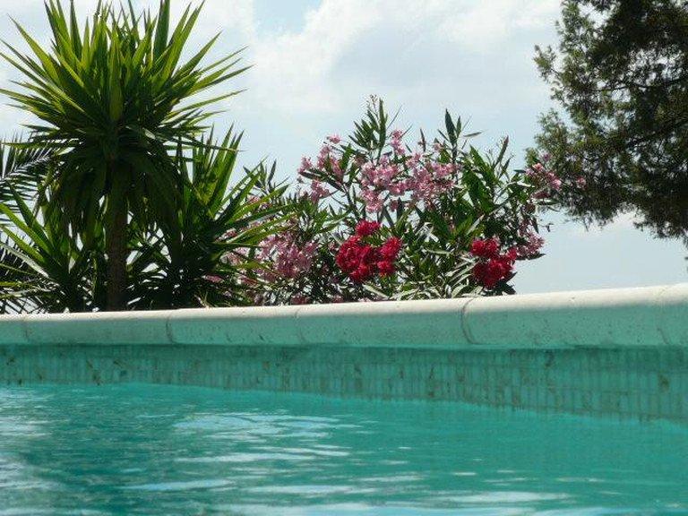 Fabulous Villa Review Of Propriete De Charme Proche De Fayence