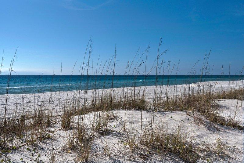17878 Frente a la playa Rd # C-2 | SeaRinity-Beach
