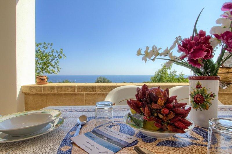 Corbezzolo vista mare, holiday rental in Marina di Felloniche