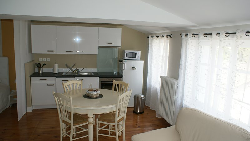 Amazing studio with shared pool, holiday rental in Saint Sigismond de Clermont
