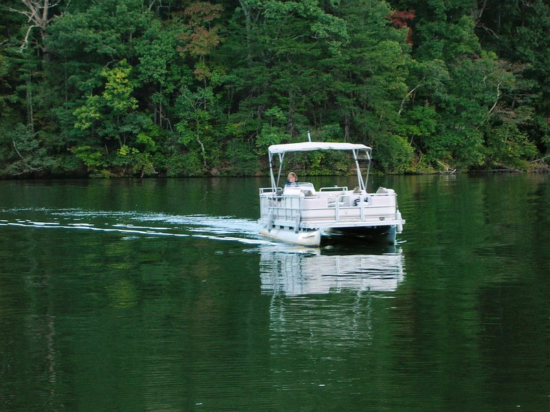Ask us about renting a pontoon boat to explore Lake Lure.  Marina is only 2 miles from cabin.