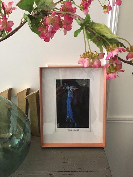 Iris la fleuriste à Bordeaux, Ferienwohnung in Villenave D'ornon