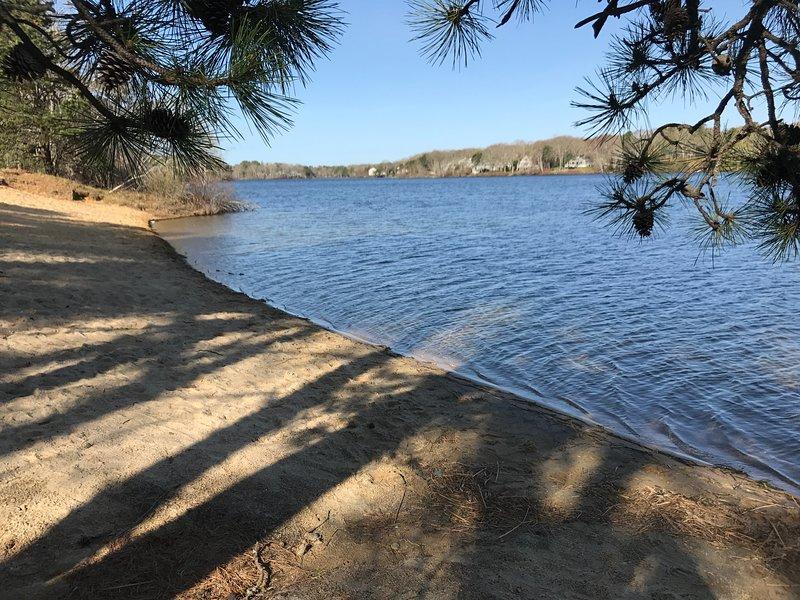 Ailes Grove Beach - Piscine - Juste à pied
