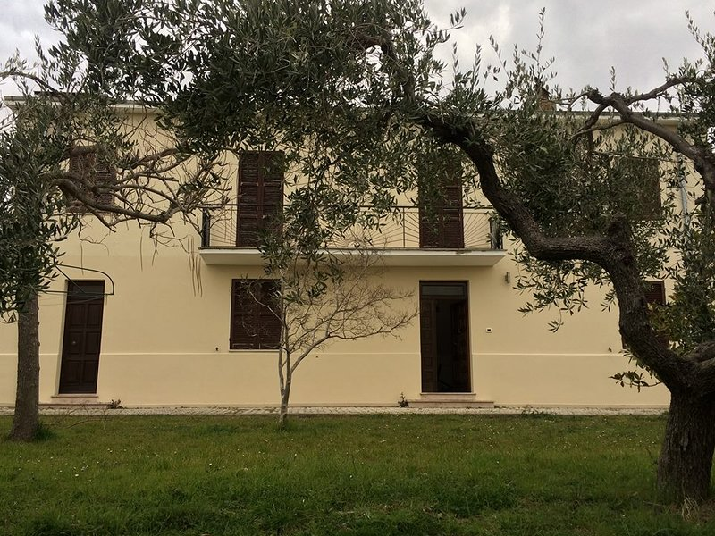 Apartment in farmhouse with olive grove and mountain views, vacation rental in Arielli
