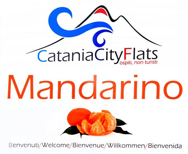 Catania City Flats  MANDARINO Appartamento al centro storico di Catania, holiday rental in Raddusa