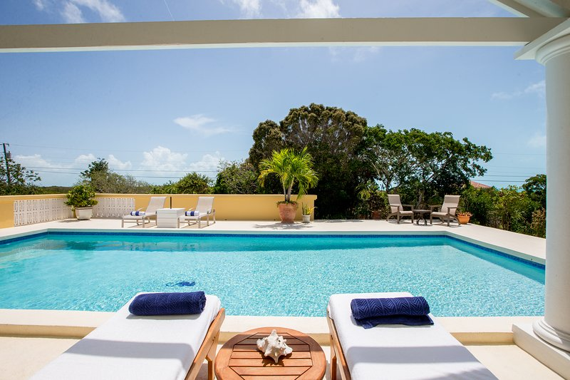 Poolside with your favorite book or an afternoon siesta.  Crystal clean water.  Complete privacy.