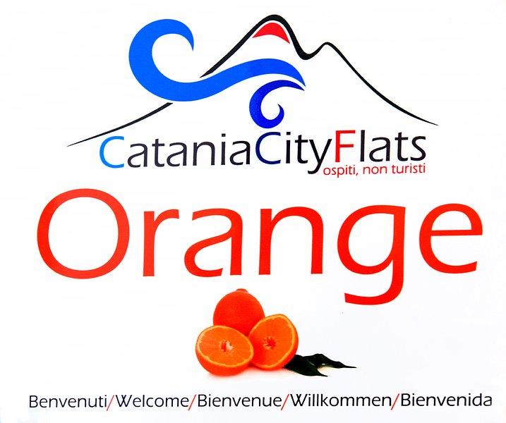 Catania City Flats ORANGE Appartamento al centro storico di Catania, holiday rental in Raddusa