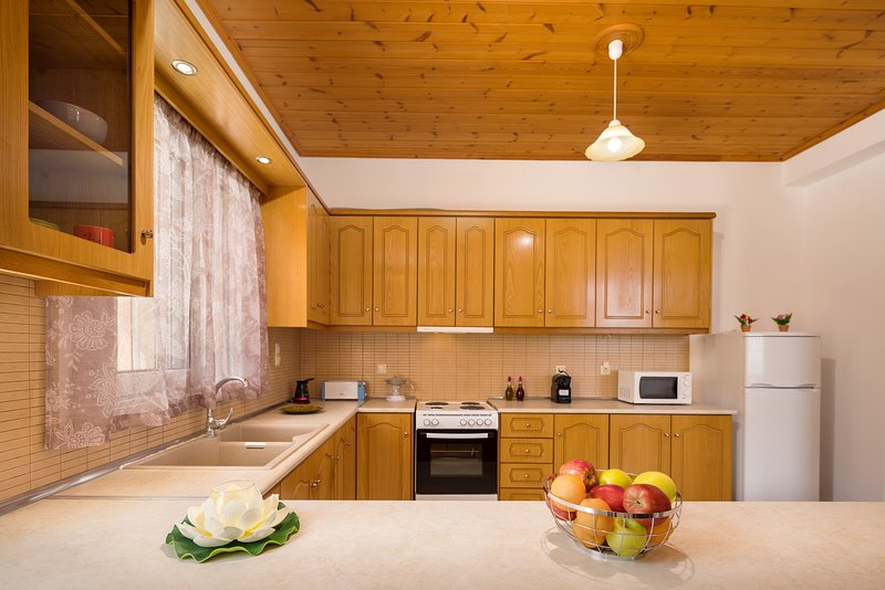 Family House 1, holiday rental in Lithakia