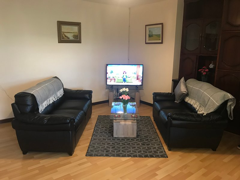 TV/Living Area