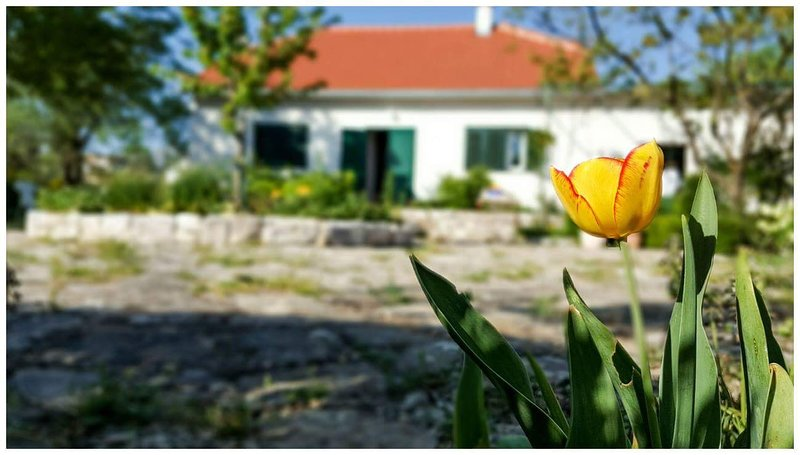 Holiday home 'Kike & Mara',Drniš, vacation rental in Drnis