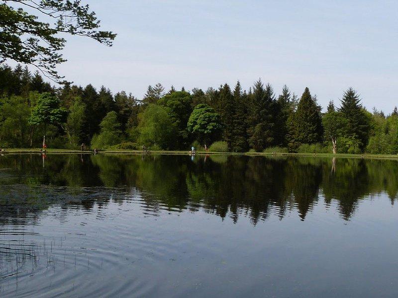 Enjoy a lovely walk around the Loch