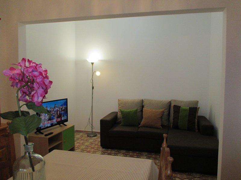 Beautiful house with garden, location de vacances à Santo Estevao