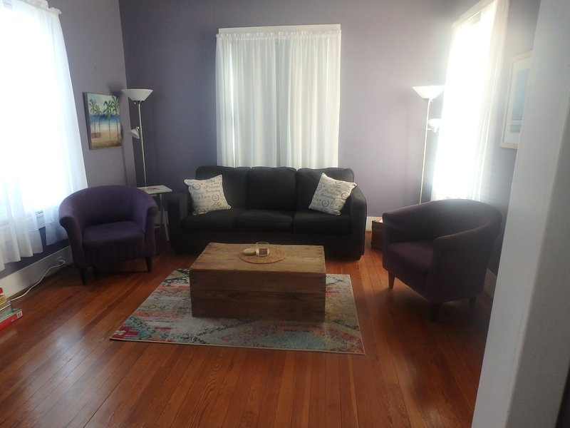 Large living room with fold out couch
