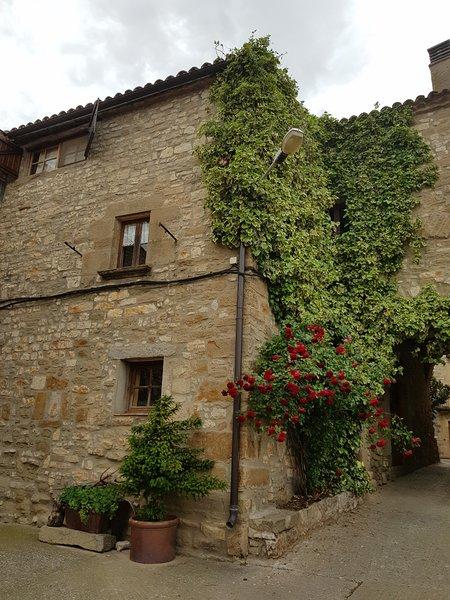 Alojamiento rural, en un pueblo medieval de la comarca de la Segarra., holiday rental in Tarrega
