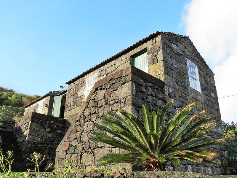 Vista Winery Alto Passinho
