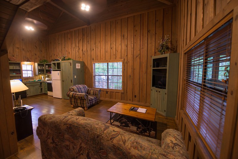 Cabins at Green Mountain Living Area