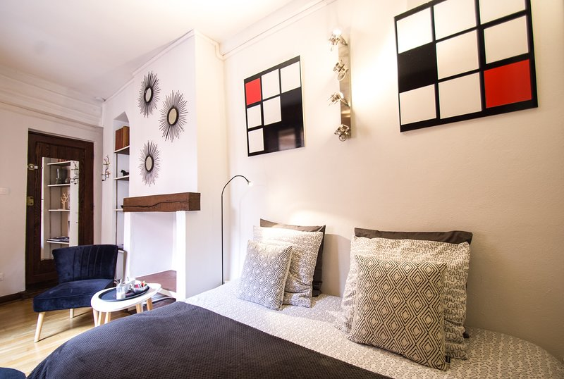 Le Studio Croix Baragnon, holiday rental in Toulouse