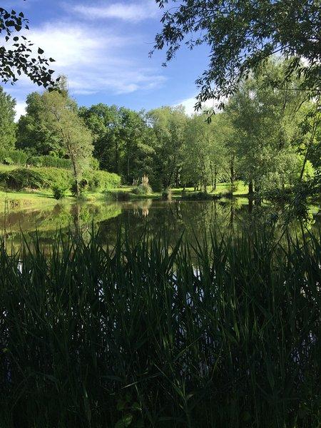 Lac privé plein de poissons, la faune étonnante et un lieu de détente pour regarder les martins-pêcheurs.