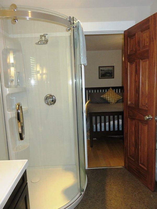 Ben ristrutturato bagno con doccia, wc e lavandino. Non v'è abbondanza di immagazzinaggio nella vanità.