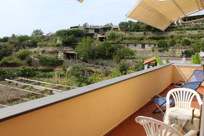 Ischia Forio Splendido Appartamento in Villa immerso nel verde, vacation rental in Forio