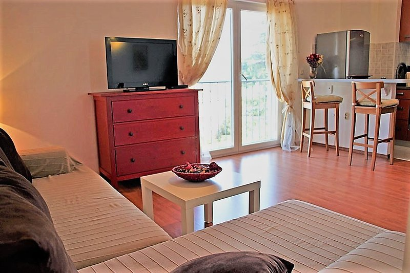 The apartment has a spacious open plan living-dining room area, one bedroom and one bathroom.