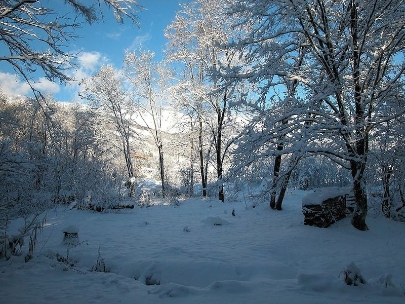 Giardino sul retro in inverno.
