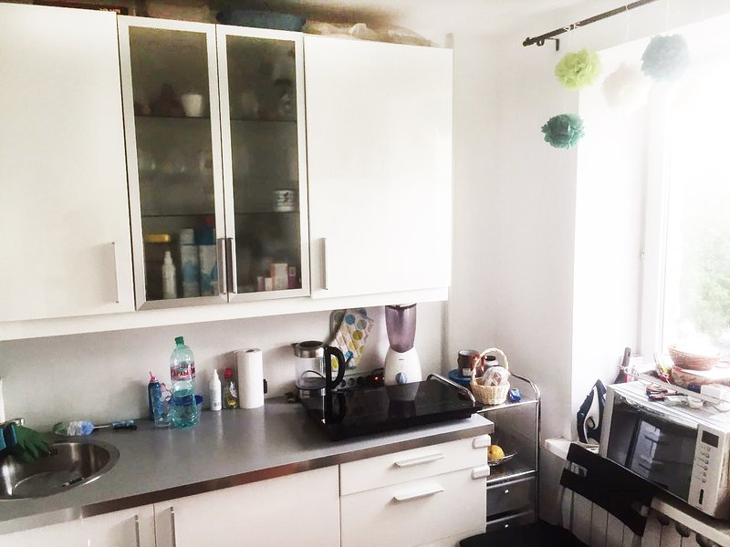 Spacious one bedrooms FIFA flat, vacation rental in Semyonovskoye