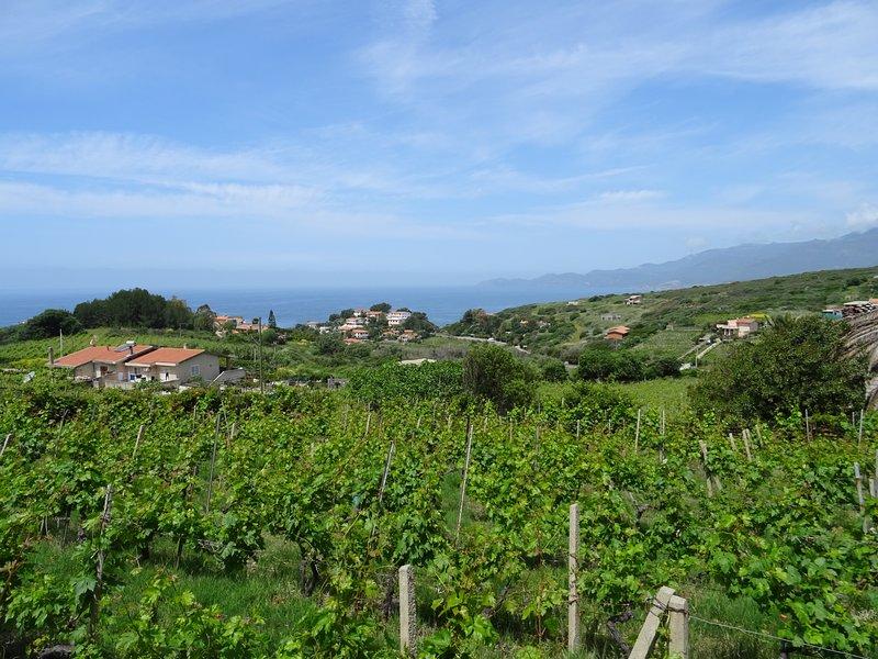 casa con vistas al mar y viñedos
