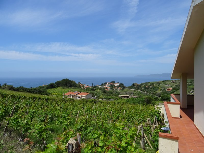 sea ​​and vineyards from the first floor balcony