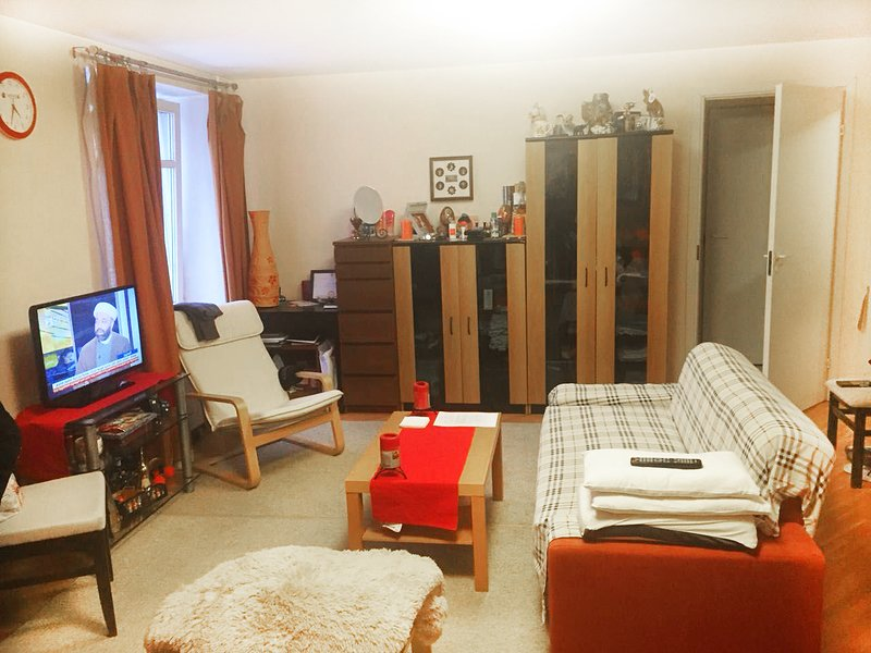 Bring studio apartment for FIFA, vacation rental in Semyonovskoye