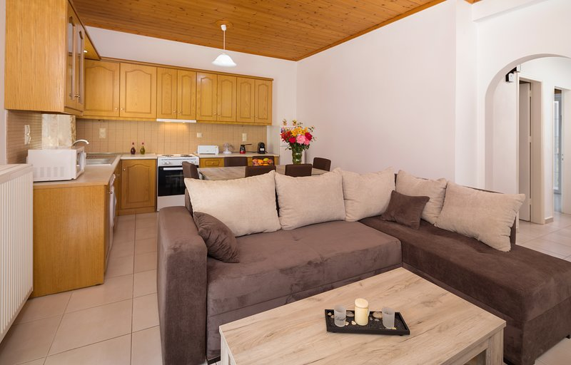 Family House 2, holiday rental in Lithakia