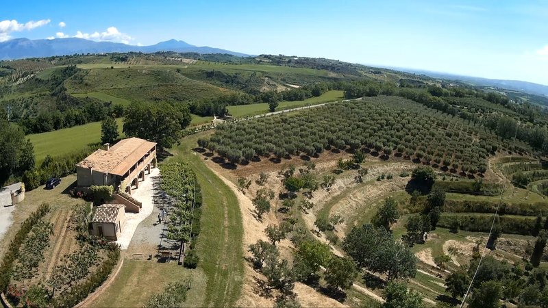 Panoramic view of the farmhouse and the olive grow