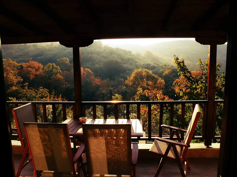 Pelion Chalet, holiday rental in Ano Lechonia